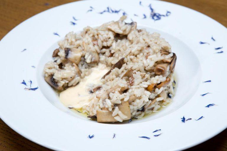 Ριζότο με άγρια μανιτάρια και φοντί παρμεζάνας, Μαστίχα, 4